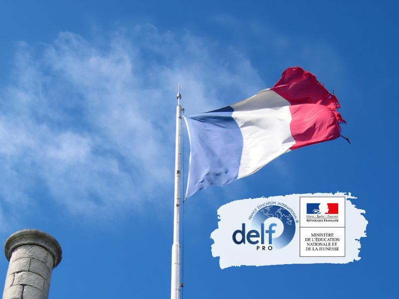 Préparation à la Certification Delf ou Delf Pro en Français Langue Etrangère (FLE) : Formation Individualisée