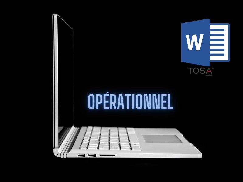 Word 2016 Niveau Initial vers Opérationnel