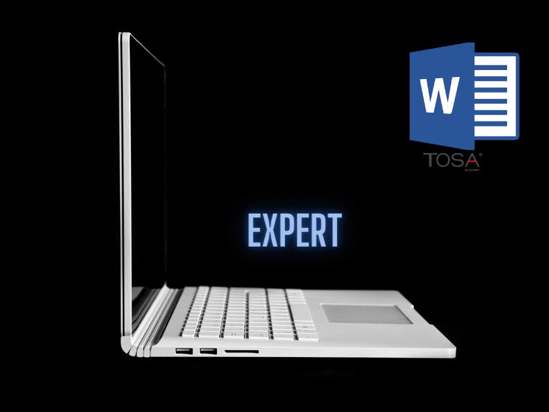 Word 2016 Niveau Avancé vers Expert